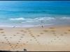 Ronds Belza, Biarritz, France