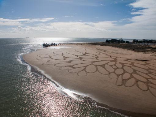 sam dougados, la rochelle, ile de ré, pont, invasion, beach art, sand drawing