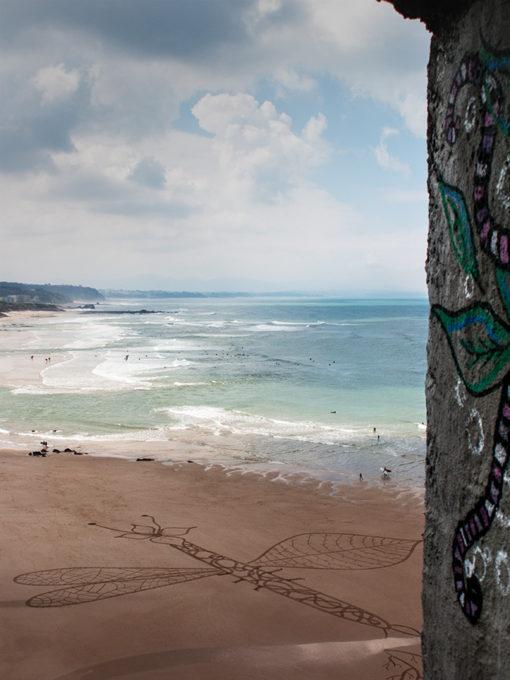 graffiti, dragonfly, libelulle, biarritz, dougados, beach art, ocean