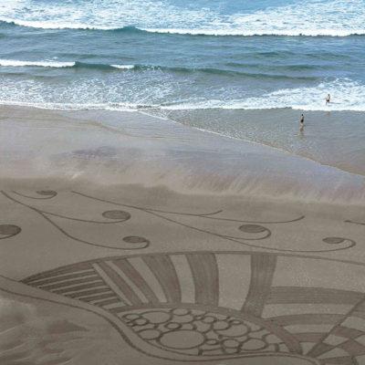 coquillage, shell, biarritz, dougados