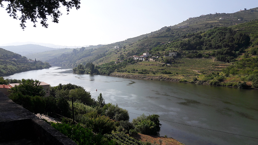 portugal, Douro, vignoble, wine, Porto