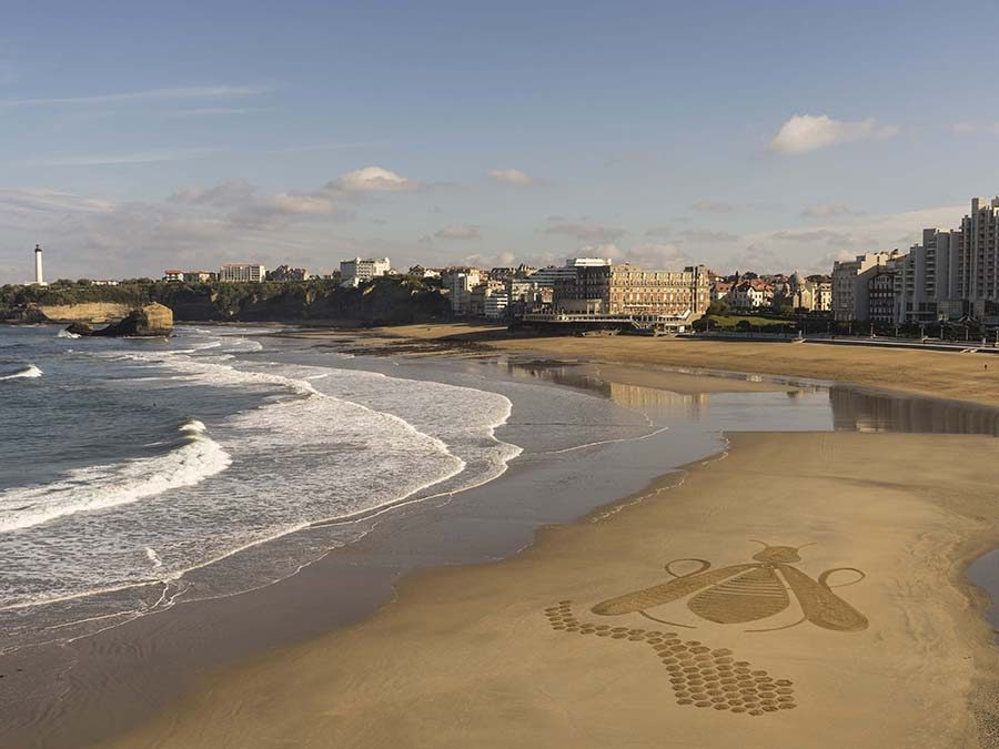 abeille, grande plage, biarritz, guerlain, drone, dougados, beach art